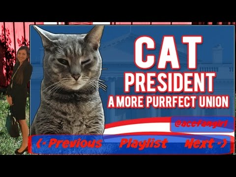 Cat President Blind - Finale: Thunderpaw, The Really Rude Candidate