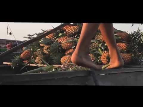 travel CẦN THƠ - BẾN TRE - TIỀN GIANG