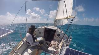 Flamingo Cay, The Bahamas, Journey to the Ragged Islands Ep. 7
