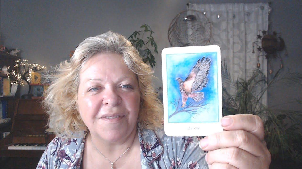 tarot tilly february 5 2020