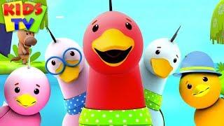Funny Little Ducks   Little Eddie Cartoons   Songs For Children - Kids TV