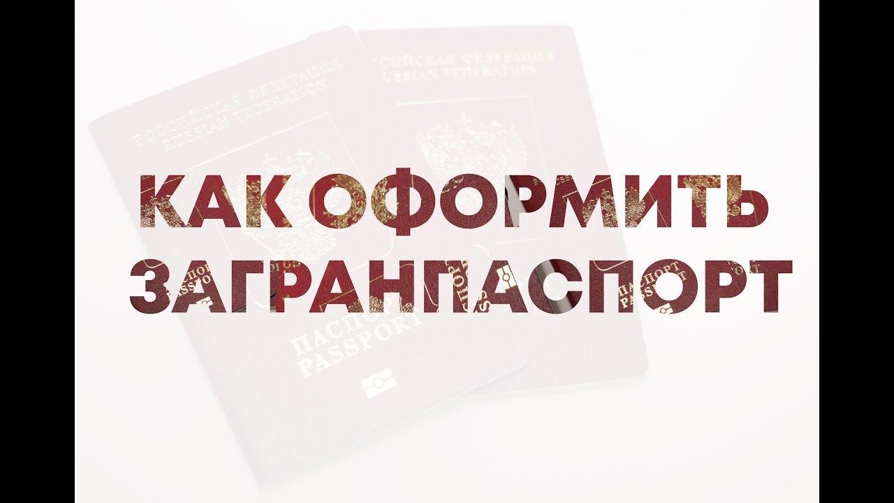 заявление на загранпаспорт нового образца бланк word