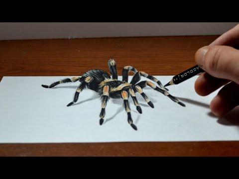 Amazing Anamorphic Tarantula Drawing - Trick Art, 3D Realism
