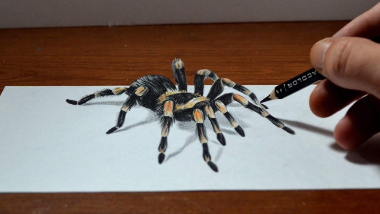 Amazing Anamorphic Tarantula Drawing Trick Art 3d Realism