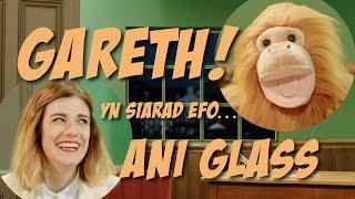 Gareth! yn holi Ani Glass