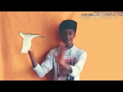 Mersal Peace Bro By Logesh