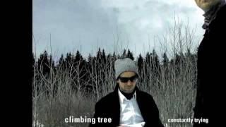 sixteen - by climbing tree