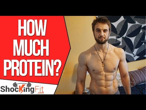 How you can Determine Your Protein Needs
