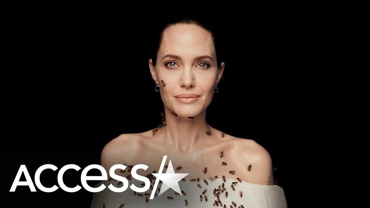 Angelina Jolie Covered In Bees: It 'Felt Lovely'
