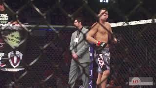 Best Crazy Moments in UFC | HD