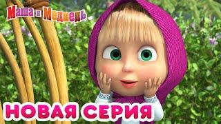 Маша и Медведь НОВАЯ СЕРИЯ Медовый день Коллекция мультиков