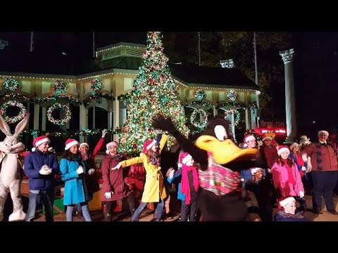 Six Flags Over Georgia - Holiday In The Park 2018 - Tree Lighting