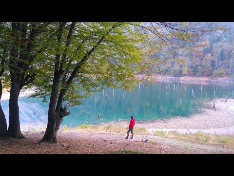 """ظهور الأشجار في قاع بحيرة """"سولوكو"""" المذهلة في بولو التركية بعد انحسار الماء"""