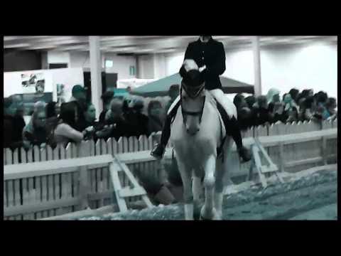 Helsinki Horse Fair 2016