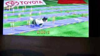 Playing Petz Sports for the Wii!
