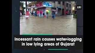 Incessant rain causes water-logging in low lying areas of Gujarat - Gujarat News