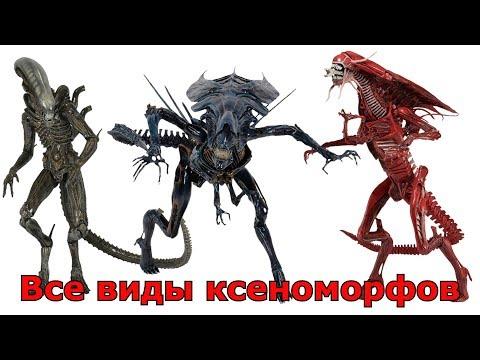 Сравнение всех видов Ксеноморфов (Чужие)