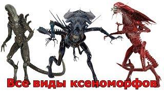 Фото Сравнение всех видов Ксеноморфов Чужие