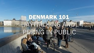 Danes are famous for their adherence to stoplight laws (unless they...