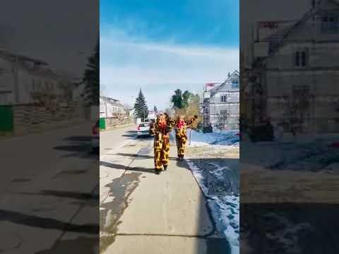 Umzug 2021 - Coronakonform in Wollmatingen #HoNarroDehom