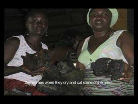 Women Bushmeat Sellers of Monrovia