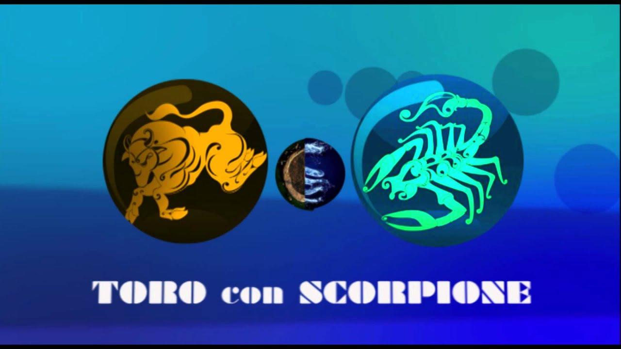 Affinita 39 toro con scorpione youtube - Toro scorpione a letto ...
