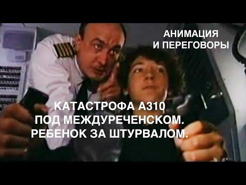 Катастрофа Airbus А310 под Междуреченском. Ребенок за штурвалом. Анимация и переговоры пилотов.