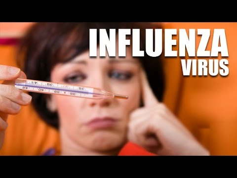 Influenza Virus – A Viral Infection, Cause, Symptoms and Treatment