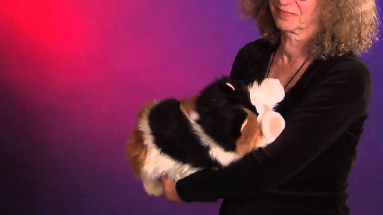 Beep by cat Puppe Muschi