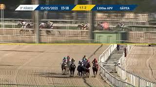 Vidéo de la course PMU PREMIO LUTH DE SARON