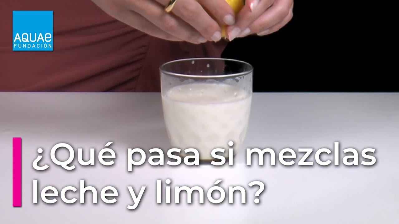 cuanta proteina contiene un litro de suero de leche