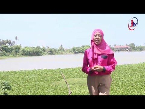 Lembar Sejarah UIN Alauddin Makassar ( pra kemerdekaan indonesia di Makassar )