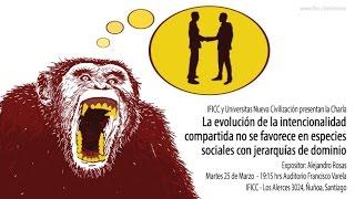 La evolución de la intencionalidad compartida... - Alejandro Rosas