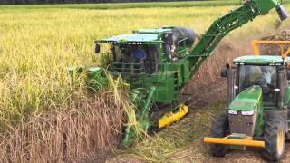 Repeat youtube video CH 570 SugarCane Harvester Thai