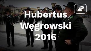 Hubertus Węgrowski 2016