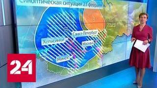 """""""Погода 24"""": в Москве объявлено штормовое предупреждение"""