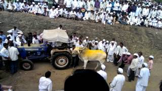 Repeat youtube video Dhamankhel Yatra 2014 Junnar Taluka