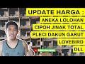 Update Harga Pleci Dakun Garut Cipoh Jinak Total Lovebird Kenari Dll Di Kios Sudiro  Mp3 - Mp4 Download