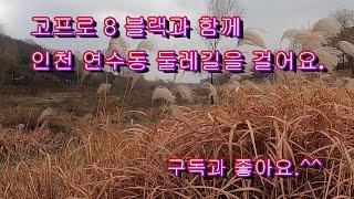 고프로8 블랙과 함께 우리 인천 연수동 둘레길과 승기천…