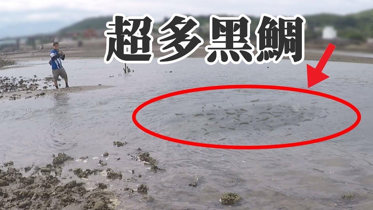 這裡的黑鯛比水溝的吳郭魚還多!釣的好爽 根魚釣 溯溪 黑格 黑牛 鯛魚  - YouTube