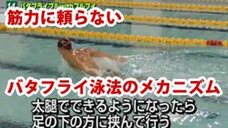 バタフライ・スピードアップ・プログラム 佐野秀匡監修・上達とスピードアップのための秘密