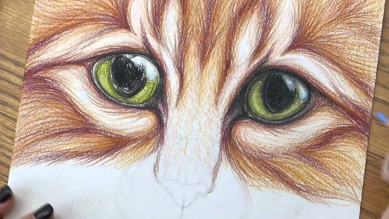 how to draw cute cats with big eyes