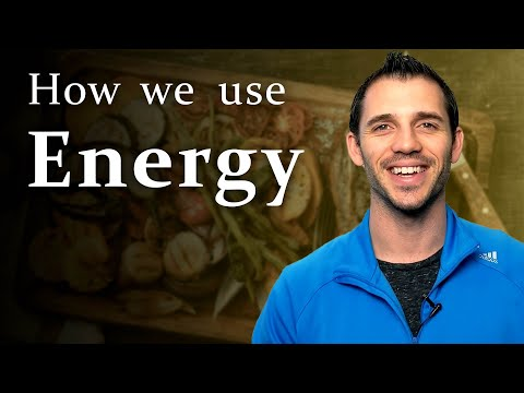Energy for Exercise, How We Make It: 55 Min Phys