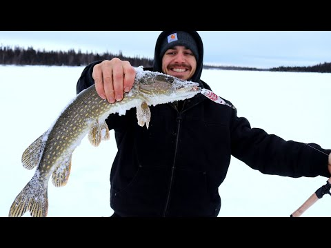 Northern Pike Ice Fishing  | Catch & Cook