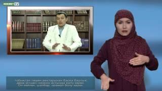Почему женщина в исламе должна покрывать голову платком? Вопросы глухонемых.