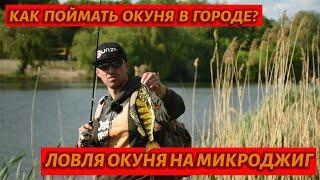 Ловля окуня на джиг с берега ✔ Как ловить окуня на микроджиг в городской черте!
