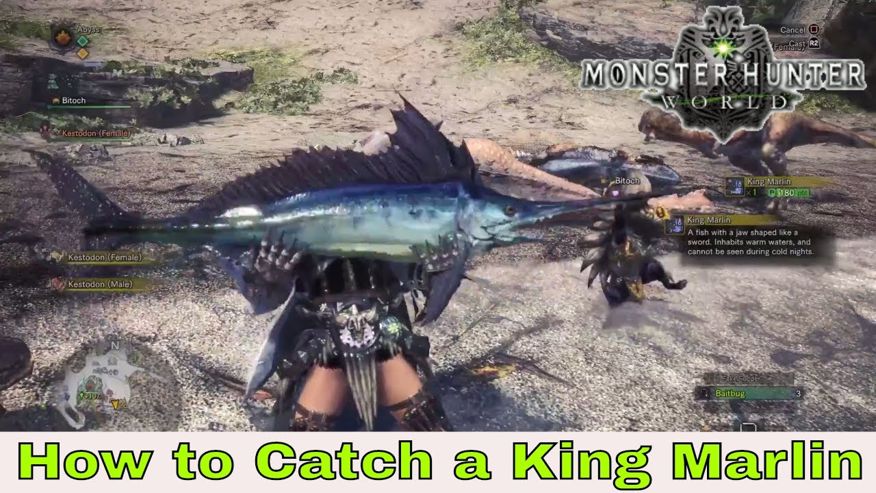 how to catch marlin mhw