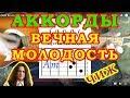 Чиж Вечная молодость Аккорды Песня на гитаре Видео урок mp3
