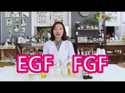 천연화장품 나인티 EGF-FGF 보습에센스 직접 만들어보자