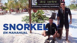 Snorkel en Mahahual
